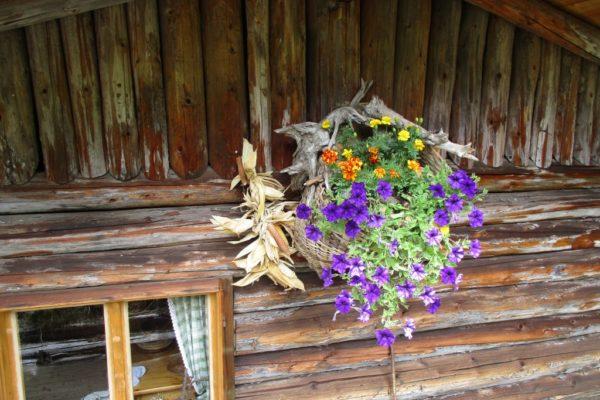 Korb Blumen Sommer In die Mahder