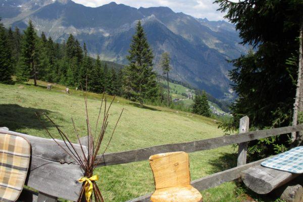 In die Mahder Natur Berge Sommer Wandern Idylle