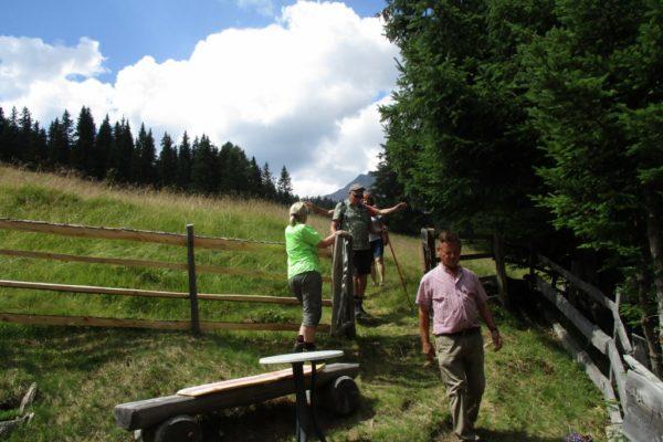 In die Mahder Gästewanderung Sommer Wandern Berge