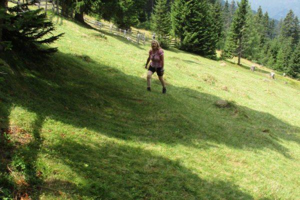 Bergwiese saftig grün In die Mahder Stammgäste