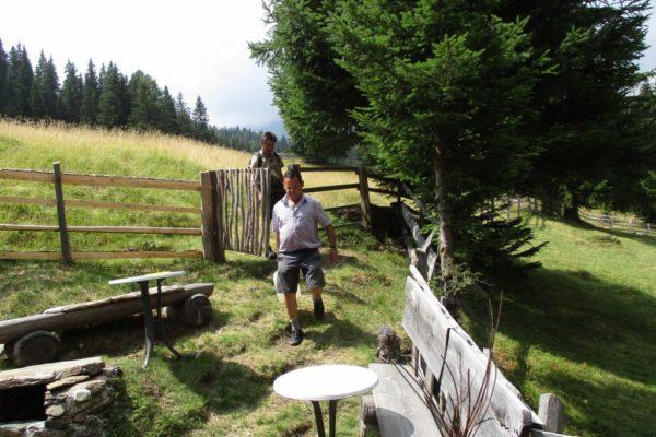 In die Mahder Sommer Berge  Wandern