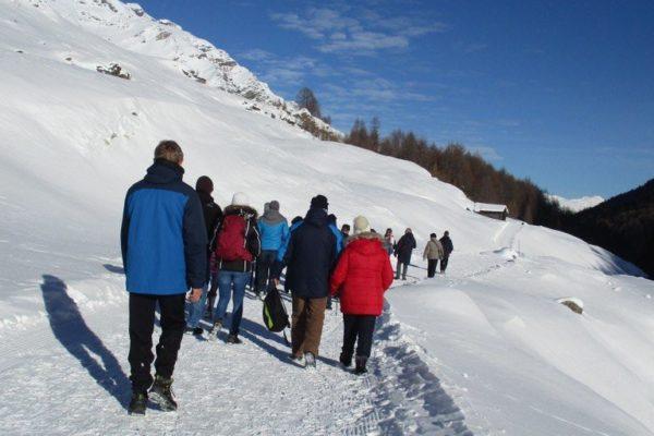 Natur Winterwandern  Silvesterwoche