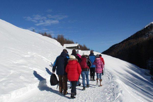 Winterwandern Silvesterwoche Bilderbuchwetter