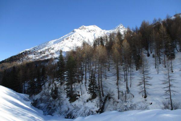 Winterwandern Silvesterwoche Natur Schnee