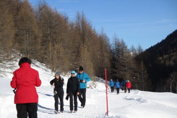 Winterwandern Silvesterwoche Natur