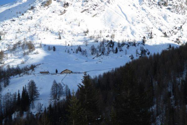 Winterwandern Silvesterwoche Berge  Almen