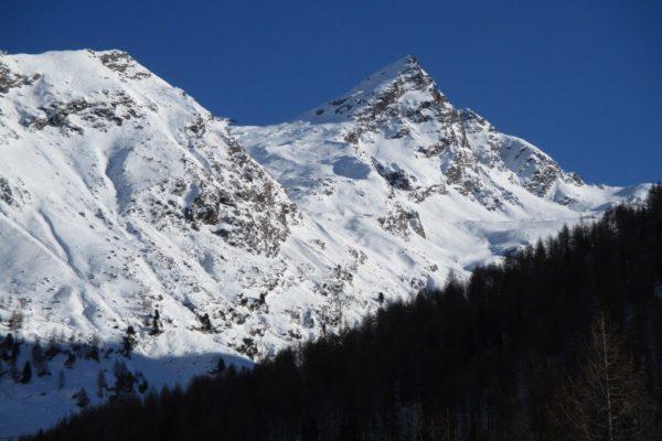 Winterwandern Natur Silvesterwoche