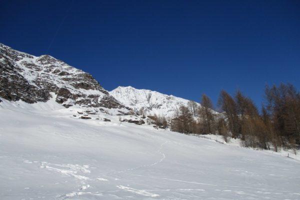 Natur Silvesterwoche Winterwandern Idylle